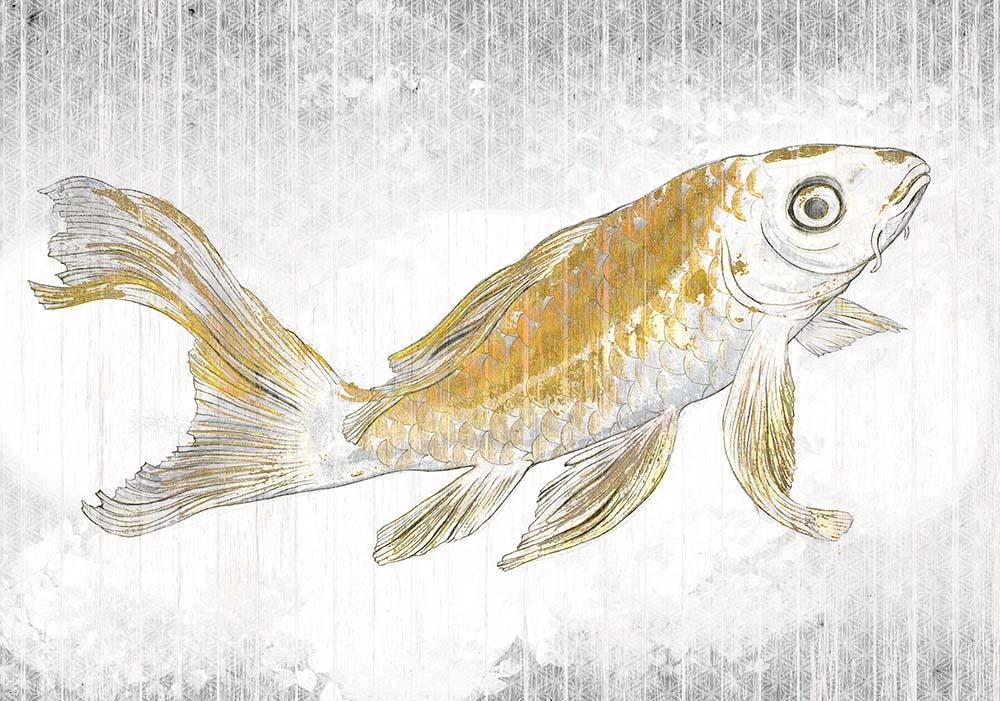 Wandtapete Golden Koi - KOMAR