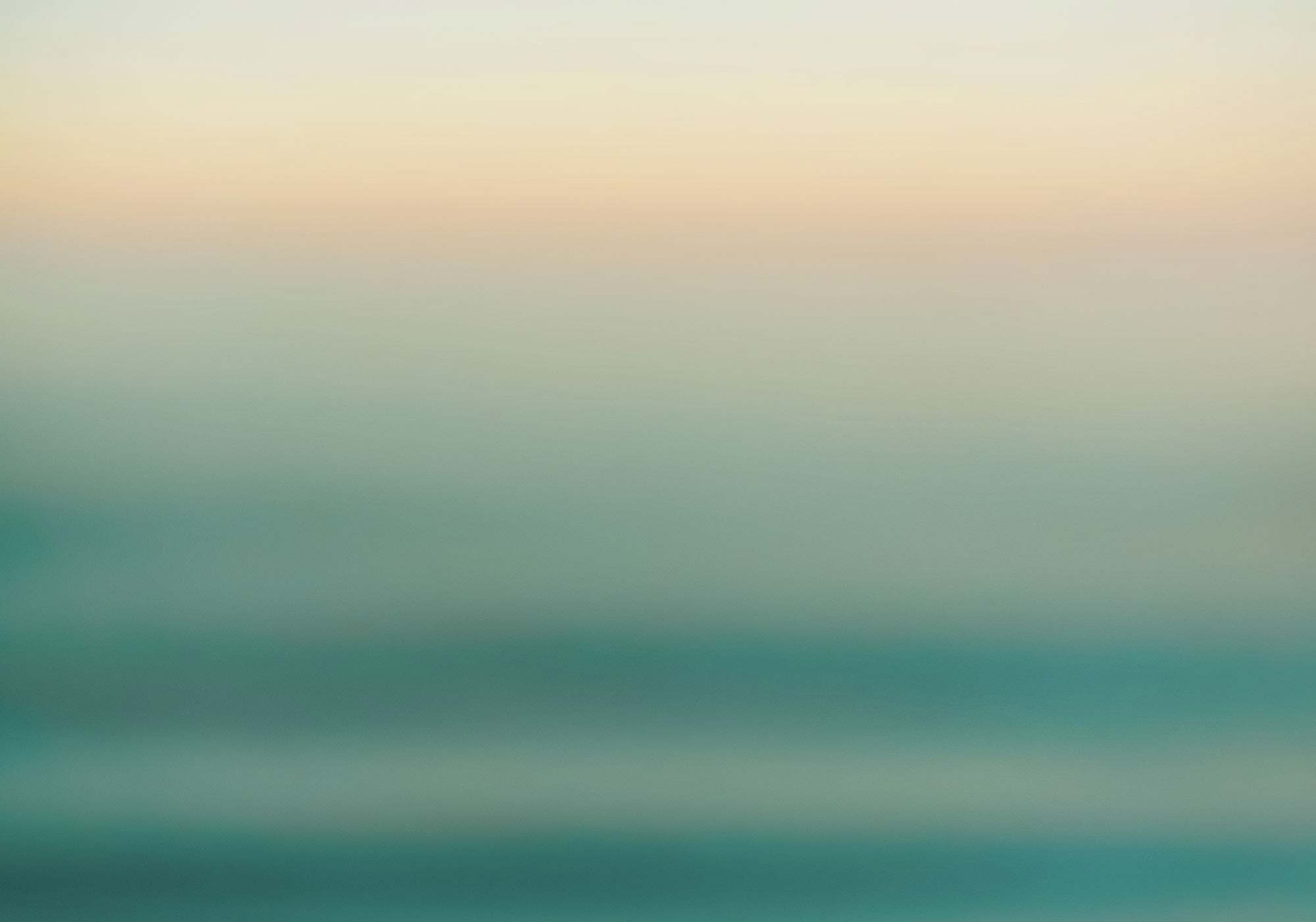 Komar_Tapete_grün_Ocean_Sense_1